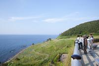 展望台から眺める初夏の白米千枚田
