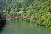 初夏の庄川峡