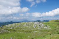 石灰岩が点在する四国カルスト県立自然公園の風景