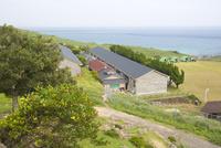 野崎島自然学習村の外観
