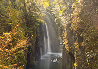 黄葉映える真名井の滝