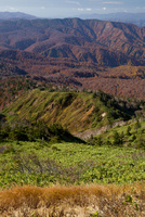 源太岩展望所より紅葉の八幡平を望む 10790011924| 写真素材・ストックフォト・画像・イラスト素材|アマナイメージズ