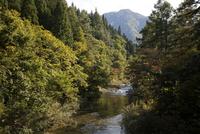 山間を流れる渓流
