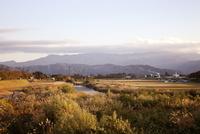 田舎の川沿いの景色