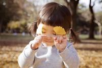 秋の公園で遊んでいる女の子 10798000268| 写真素材・ストックフォト・画像・イラスト素材|アマナイメージズ