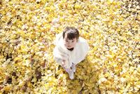 銀杏の葉で埋めつくされた地面に座っている女の赤ちゃん 10798000290| 写真素材・ストックフォト・画像・イラスト素材|アマナイメージズ