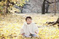 銀杏の葉で埋めつくされた地面に座っている女の赤ちゃん 10798000291| 写真素材・ストックフォト・画像・イラスト素材|アマナイメージズ