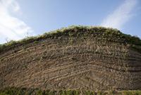 伊豆大島の地層大切断面 10798000615| 写真素材・ストックフォト・画像・イラスト素材|アマナイメージズ