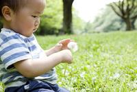 タンポポの綿毛を手に取っている子供