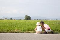 田んぼのそばで遊んでいる子供たちの後ろ姿 10802000100| 写真素材・ストックフォト・画像・イラスト素材|アマナイメージズ