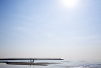 砂浜を散歩している家族のシルエット