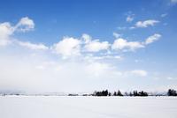 田舎町の雪景色