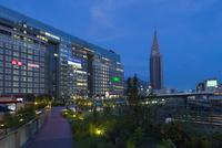 新宿駅のSuicaのペンギン広場とドコモタワー
