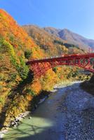 秋の黒部峡谷鉄道・快晴の空にトロッコ電車と紅葉
