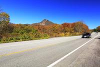 快晴の空に紅葉と道
