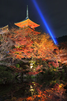 秋の清水寺・三重塔に紅葉のライトアップ