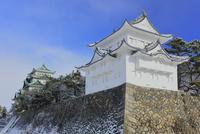 冬・雪の名古屋城天守閣と西南隅櫓