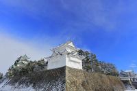 冬・雪の名古屋城天守閣に西南隅櫓と東南隅櫓