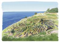 白米千枚田の田園風景と日本海 10822000016| 写真素材・ストックフォト・画像・イラスト素材|アマナイメージズ