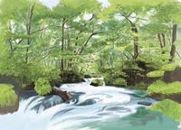 奥入瀬渓流阿修羅の流れから新緑を望む 10822000029| 写真素材・ストックフォト・画像・イラスト素材|アマナイメージズ