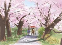 北上展勝地の桜並木を通る馬車