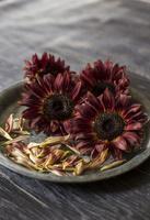 ブリキの花器にアレンジされたシックな色味のヒマワリ 10825000145| 写真素材・ストックフォト・画像・イラスト素材|アマナイメージズ