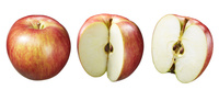 リンゴ素材 津軽