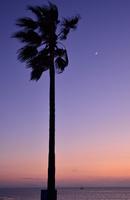 南知多 野間の夕景