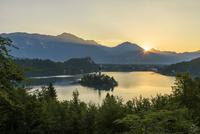 ブレッド湖 朝景