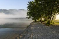 ボヒニュ湖 朝景
