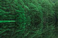 御射鹿池 新緑と映り込み