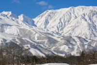 白馬の雪山の雪景色 10860000255| 写真素材・ストックフォト・画像・イラスト素材|アマナイメージズ