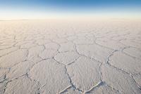乾季のウユニ塩湖の亀甲模様
