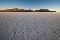 乾季のウユニ塩湖の亀甲模様と朝日