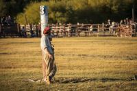 パタゴニアの牧童ガウチョ