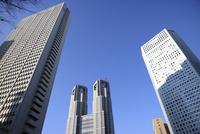 新宿の東京都庁とビル群