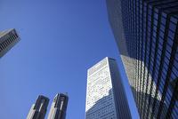 東京都庁と新宿のビル群