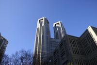 新宿副都心の都庁