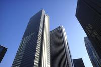 新宿の超高層オフィスたち 10884000084| 写真素材・ストックフォト・画像・イラスト素材|アマナイメージズ
