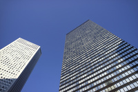 新宿の高層ビルを見上げる