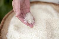 精米した米を確認するシニア女性の手