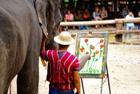 象のお絵描き 10897000166| 写真素材・ストックフォト・画像・イラスト素材|アマナイメージズ