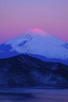 紅富士 10899000174| 写真素材・ストックフォト・画像・イラスト素材|アマナイメージズ