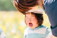 お花畑で泣く少女と母親 10901000072| 写真素材・ストックフォト・画像・イラスト素材|アマナイメージズ