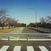 横断歩道と空