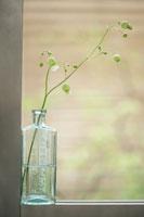 ボトルと花
