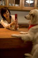 犬の写真を撮る女性