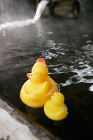 温泉とおもちゃのアヒル 11000018514| 写真素材・ストックフォト・画像・イラスト素材|アマナイメージズ