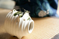 蚊取り線香 11000018612| 写真素材・ストックフォト・画像・イラスト素材|アマナイメージズ