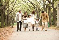 並木道を歩く三世代ファミリー